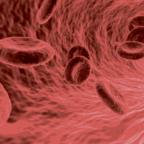 Lernfähige Software  identifiziert Krebszellen