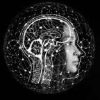 Vor der künstlichen ist erst die menschliche Intelligenz gefragt